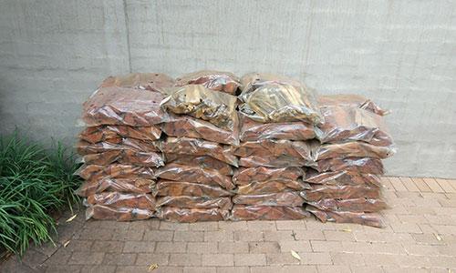 firewood pretoria 0605858769